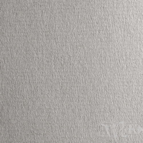 Папір кольоровий для пастелі Ingres 733 cenere 70х100 см 160 г/м.кв. Fabriano Італія