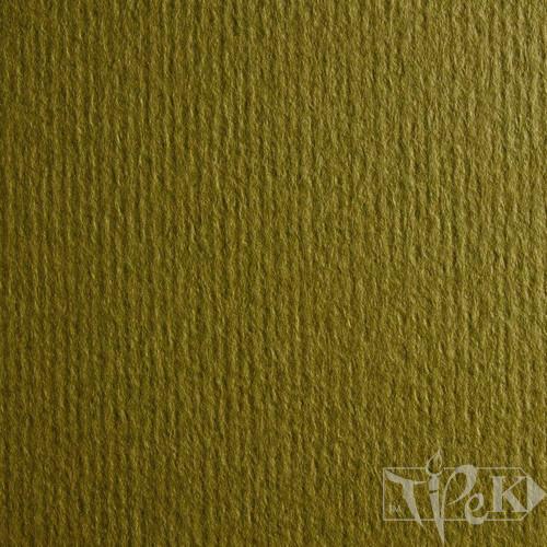 Картон цветной для пастели Murillo 810 oliva 70х100 см 190 г/м.кв. Fabriano Италия