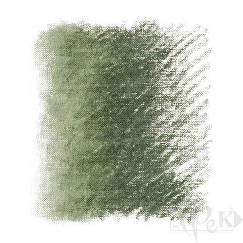 Пастель олійна Classico 296 зелений земляний Maimeri Італія