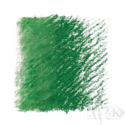Пастель олійна Classico 340 зелений темний стійкий Maimeri Італія