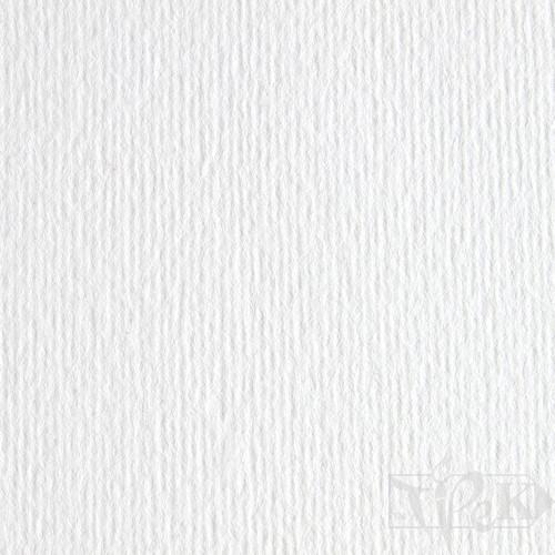 Картон кольоровий для пастелі Elle Erre 00 bianco 50х70 см 220 г/м.кв. Fabriano Італія