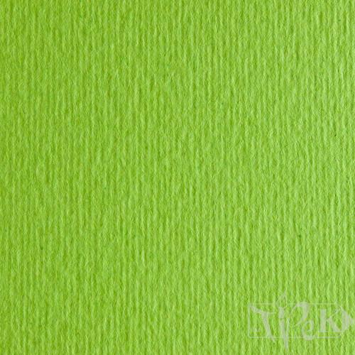 Картон цветной для пастели Elle Erre 10 verde pisello 50х70 см 220 г/м.кв. Fabriano Италия