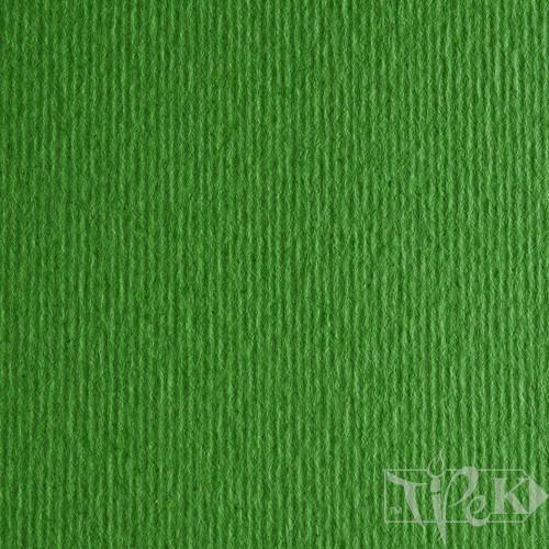 Картон кольоровий для пастелі Elle Erre 11 verde 50х70 см 220 г/м.кв. Fabriano Італія