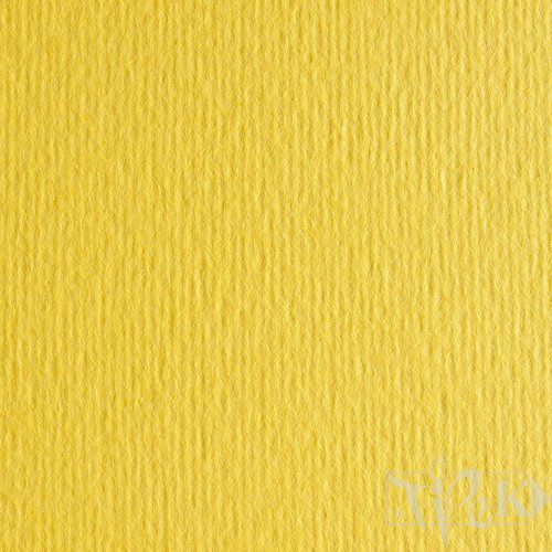 Картон кольоровий для пастелі Elle Erre 25 cedro 50х70 см 220 г/м.кв. Fabriano Італія