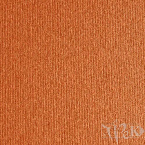 Картон кольоровий для пастелі Elle Erre 26 aragosta 50х70 см 220 г/м.кв. Fabriano Італія