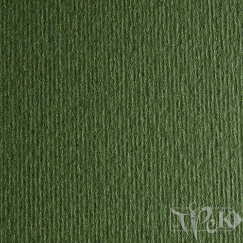 Картон кольоровий для пастелі Elle Erre 28 verdone 50х70 см 220 г/м.кв. Fabriano Італія
