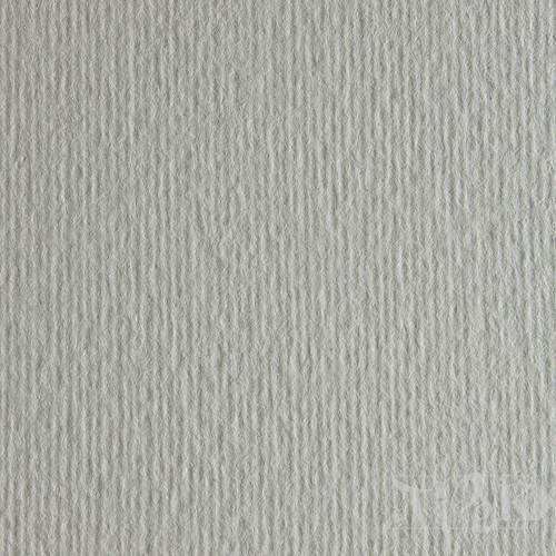 Картон цветной для пастели Elle Erre 02 perla 70х100 см 220 г/м.кв. Fabriano Италия