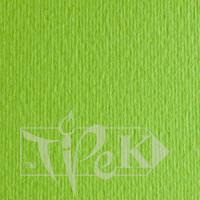 Картон цветной для пастели Elle Erre 10 verde pisello 70х100 см 220 г/м.кв. Fabriano Италия