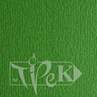 Картон цветной для пастели Elle Erre 11 verde 70х100 см 220 г/м.кв. Fabriano Италия