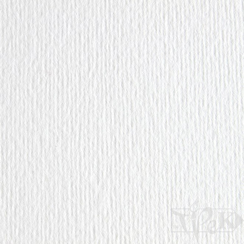 Картон кольоровий для пастелі Elle Erre 00 bianco А3 (29,7х42 см) 220 г/м.кв. Fabriano Італія