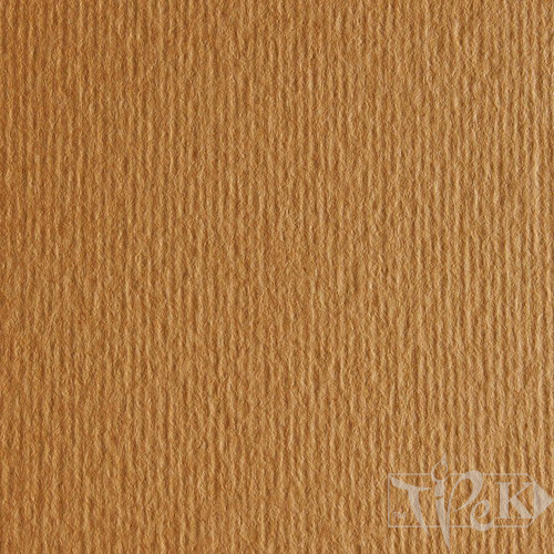Картон кольоровий для пастелі Elle Erre 03 avana А3 (29,7х42 см) 220 г/м.кв. Fabriano Італія