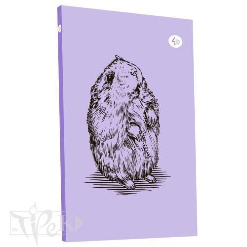 Блокнот «Animal note» hamster В6 (125х176 мм) 70 г/м.кв. 80 аркушів склейка Profiplan