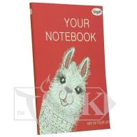 Блокнот «Artbook» rouge В6 (125х176 мм) 80 г/м.кв. 128 листов склейка Profiplan